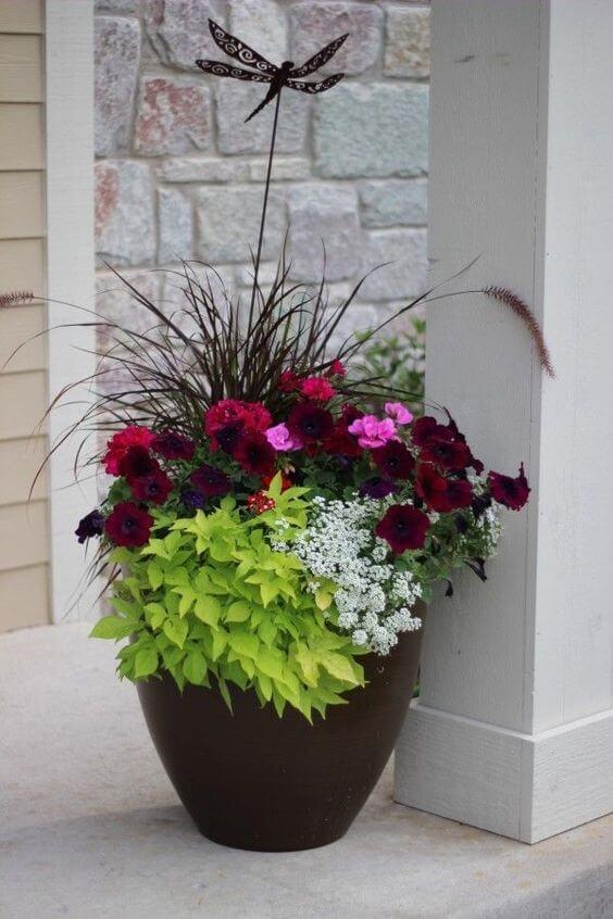 Embrace potted plants