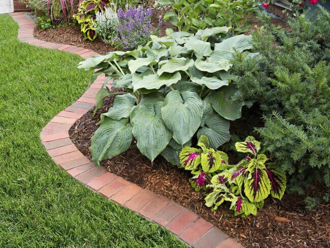 Go back to Basics with this Tutorial for Brick Edging