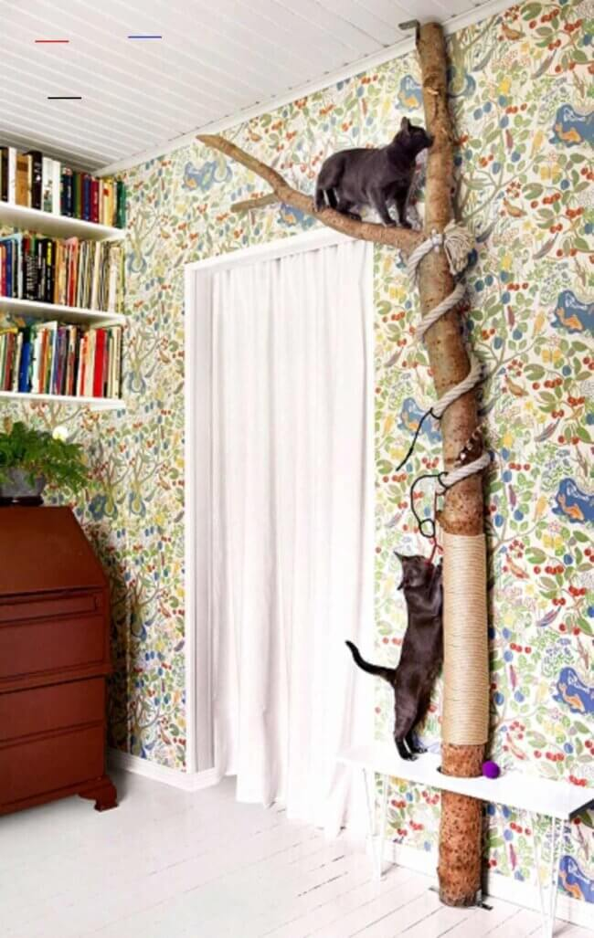 Cat scratching and climbing post