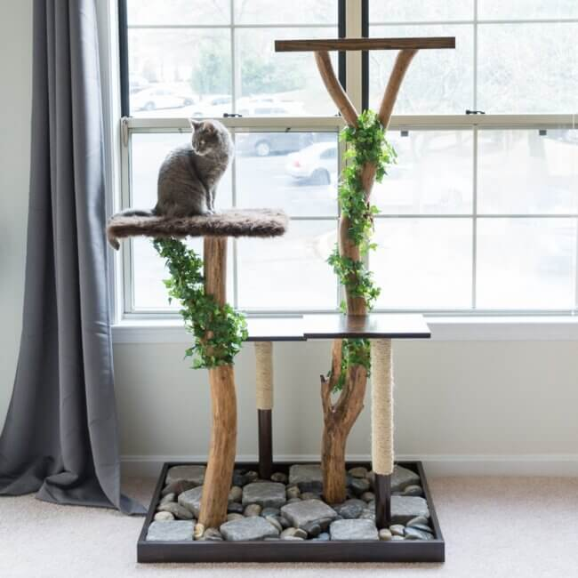 How to Make a Cat Tree From a Real Tree!
