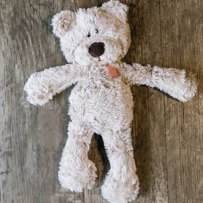 Introducing the Kimberbear, A Little Stuffed Bear for Children in Need