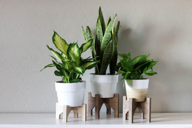 DIY Wooden Plant Stands on a CNC