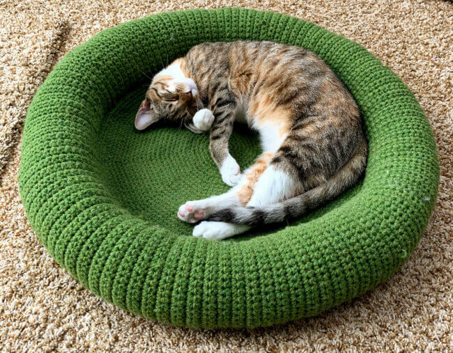 Cat Bed Pattern
