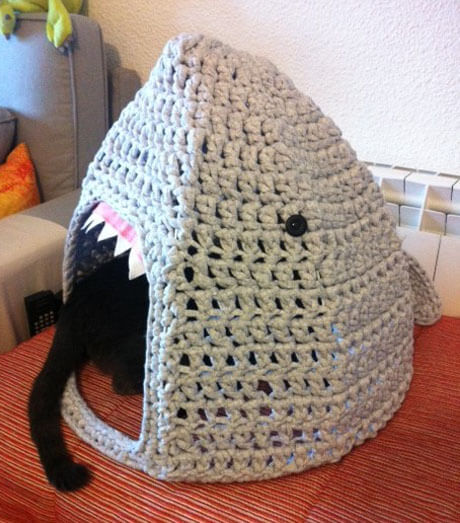 Cat home makeover: from cat to shark