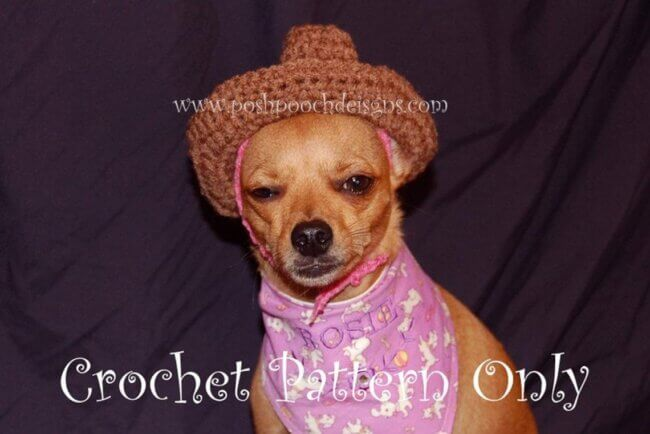 Cowboy Hat for Small Dogs - Small Dog Hat