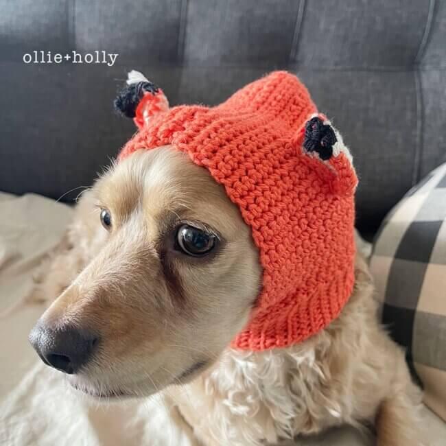 How to Crochet a Basic Dog Snood - Tutorial
