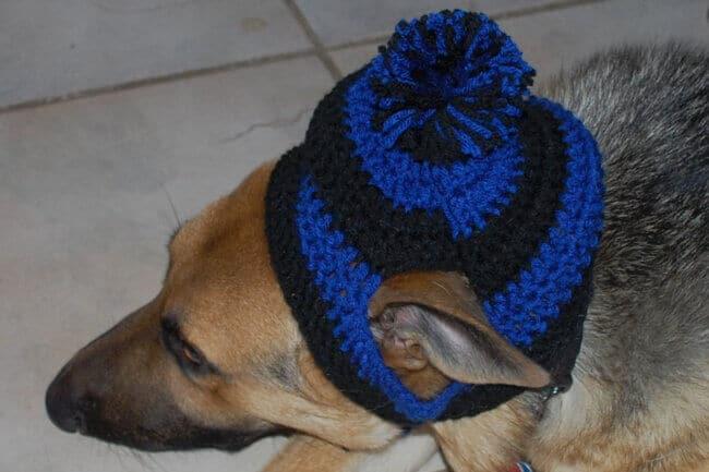Large Dog Striped Earflap Dog Hat Big dog