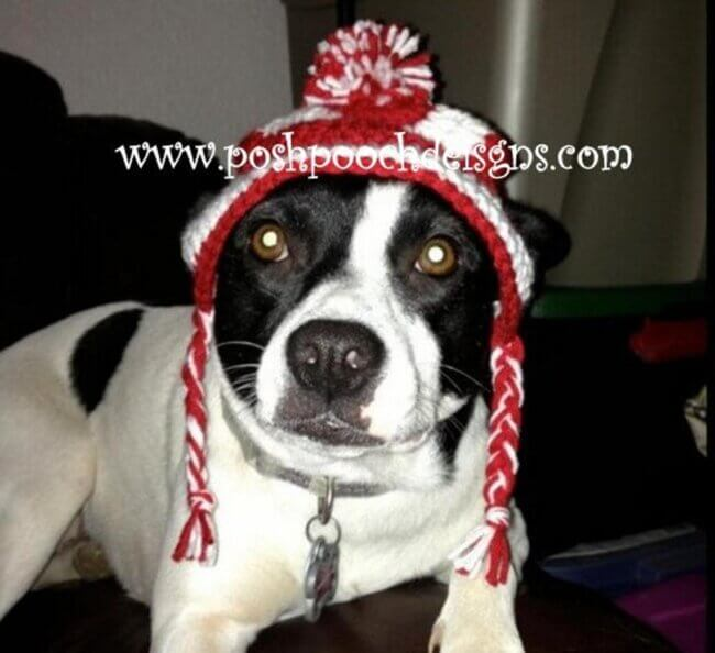 Medium Dog Earlap Striped Dog hat