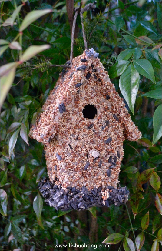 DIY Seed Covered Bird House Village