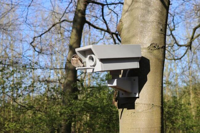 Fake Security Camera Birdhouse Made From Scrapwood
