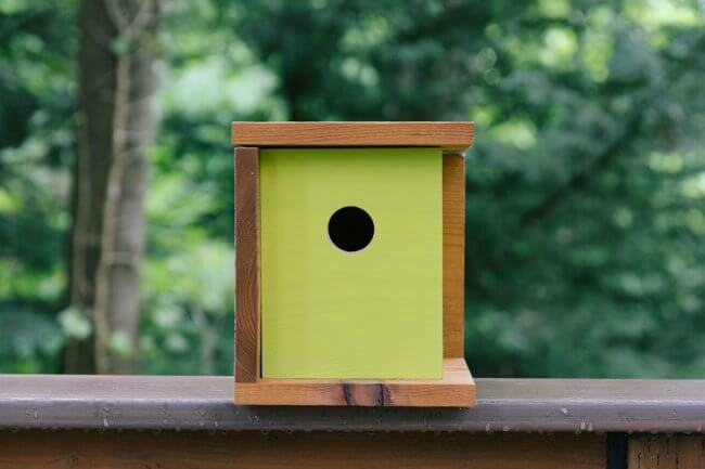 How To Build a Midcentury Modern Birdhouse