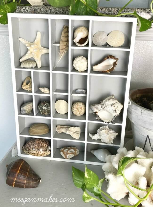 DIY Shell Shadow Box Made With a Thrifted Find