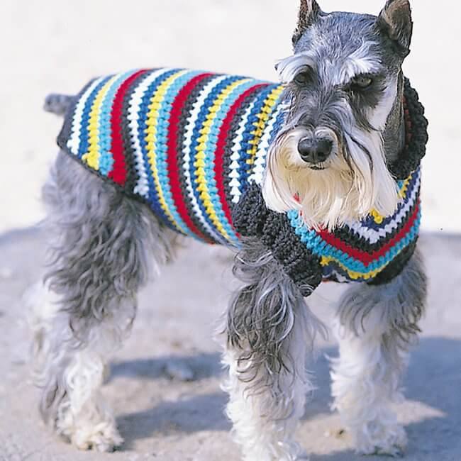 Bernat Crochet Dog Coat, S
