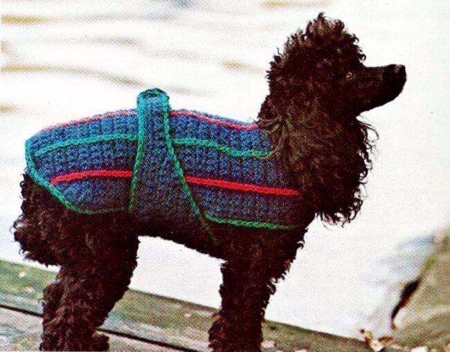 Crocheted Dog Sweater Vintage Crochet Pattern