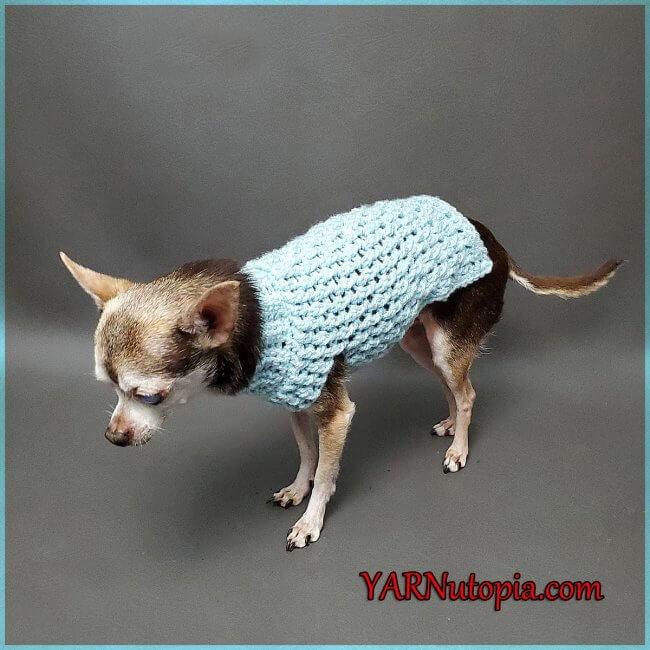 FREE Written Crochet Pattern: Bundle Up Dog Sweater