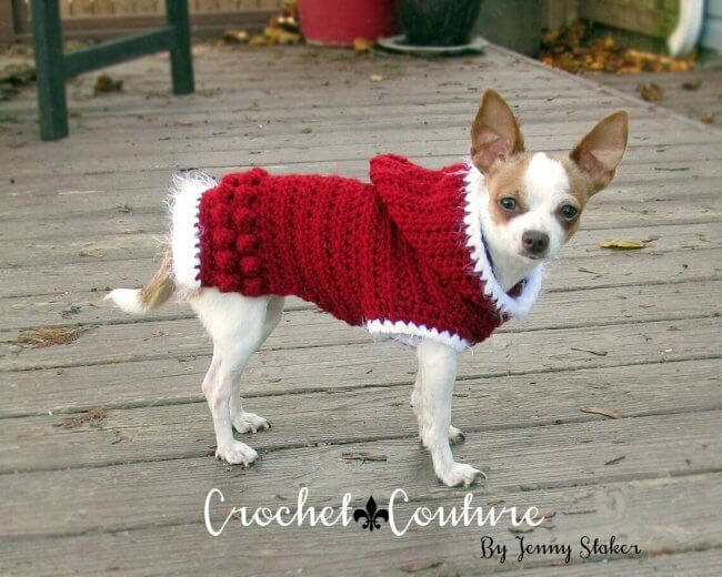 Hooded Dog Sweater Pattern