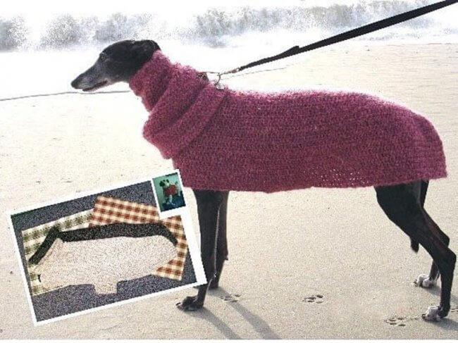 Quick Easy Greyhound Dog Sweater Crochet Pattern