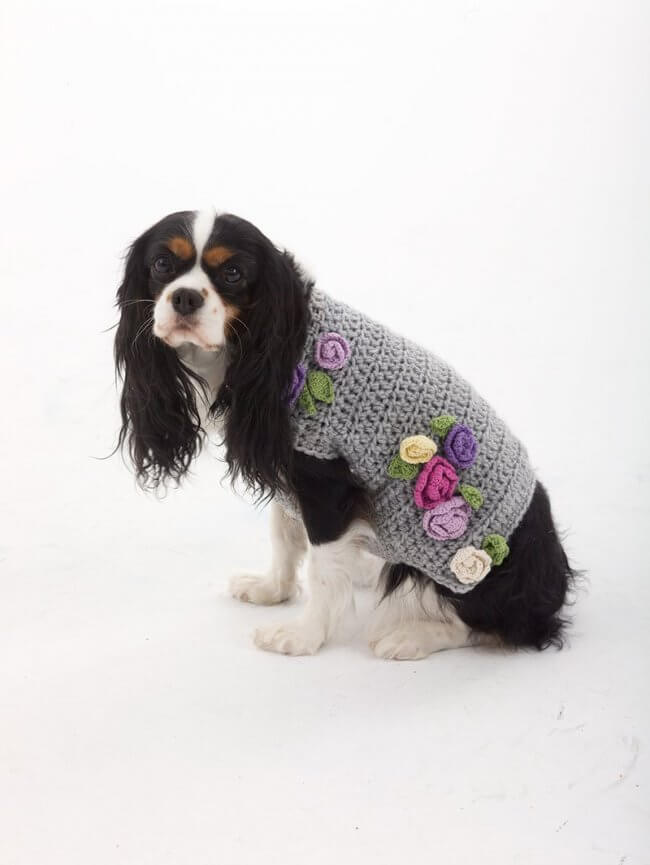 The Lady Who Lunches Dog Sweater Pattern