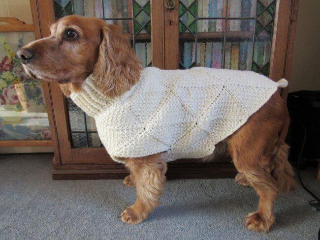 Tunisian Crochet Dog Sweater Pattern